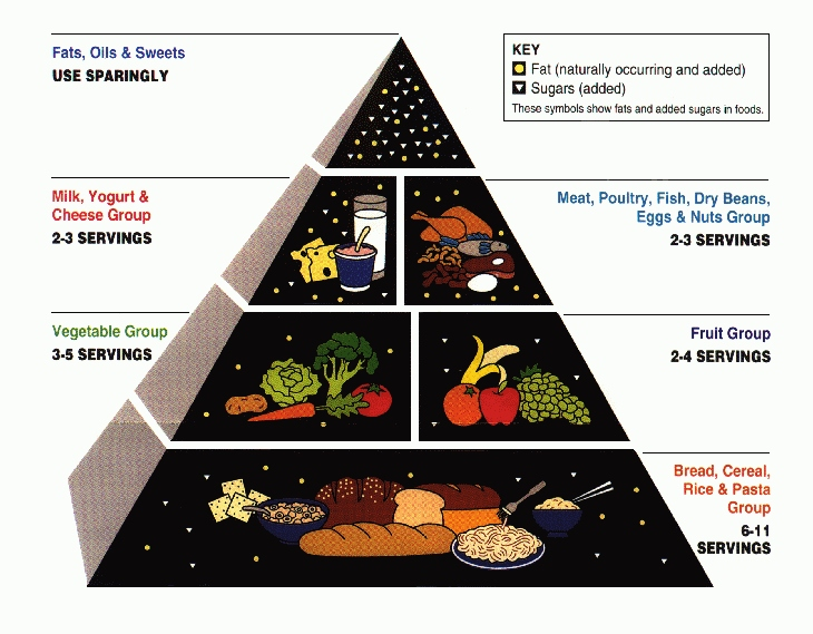 food and nutrition notes Lecture notes  you will need adobe  methods of evaluating food & nutrition policies: how do we assess costs in relation to effect and benefit, and against.
