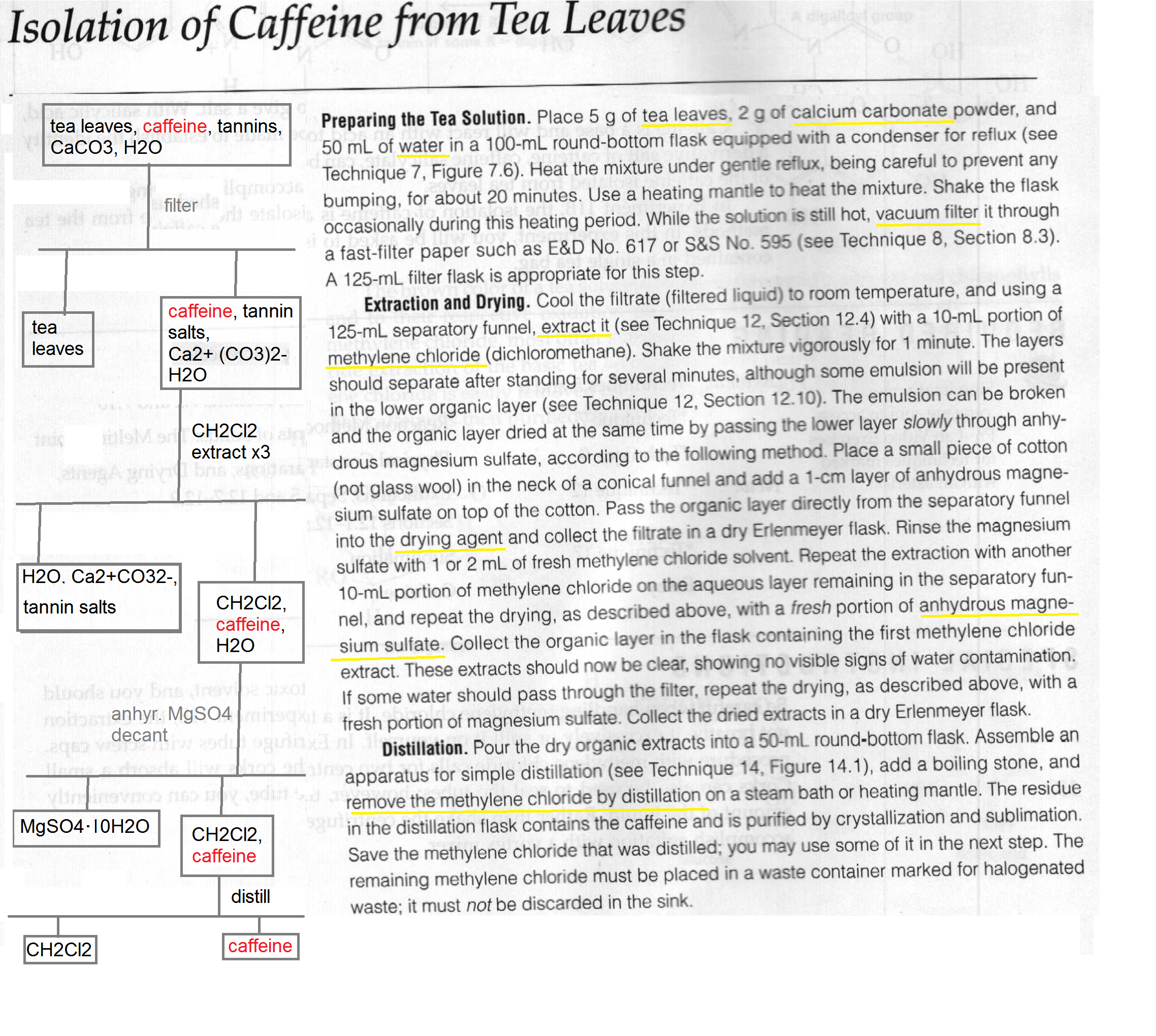 extraction and isolation of caffeine from tea leaves